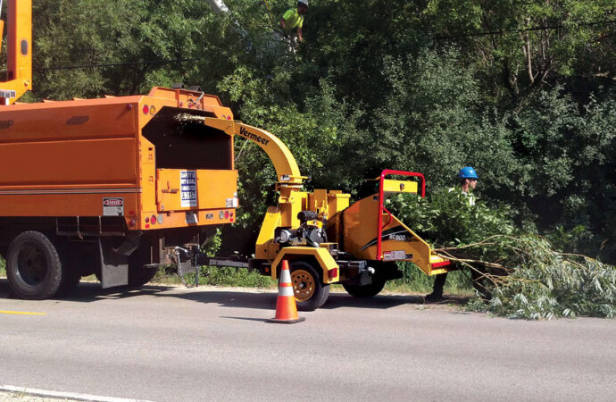 Commercial Tree Services-Deerfield Beach FL Tree Trimming and Stump Grinding Services-We Offer Tree Trimming Services, Tree Removal, Tree Pruning, Tree Cutting, Residential and Commercial Tree Trimming Services, Storm Damage, Emergency Tree Removal, Land Clearing, Tree Companies, Tree Care Service, Stump Grinding, and we're the Best Tree Trimming Company Near You Guaranteed!