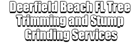 Deerfield Beach FL Tree Trimming and Stump Grinding Services Logo-We Offer Tree Trimming Services, Tree Removal, Tree Pruning, Tree Cutting, Residential and Commercial Tree Trimming Services, Storm Damage, Emergency Tree Removal, Land Clearing, Tree Companies, Tree Care Service, Stump Grinding, and we're the Best Tree Trimming Company Near You Guaranteed!