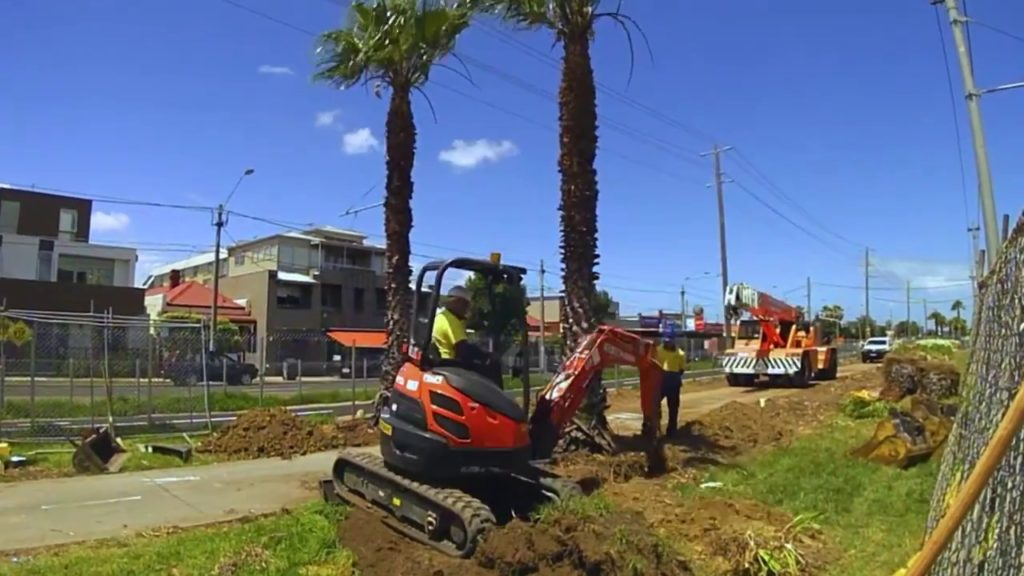 Palm Tree Removal-Deerfield Beach FL Tree Trimming and Stump Grinding Services-We Offer Tree Trimming Services, Tree Removal, Tree Pruning, Tree Cutting, Residential and Commercial Tree Trimming Services, Storm Damage, Emergency Tree Removal, Land Clearing, Tree Companies, Tree Care Service, Stump Grinding, and we're the Best Tree Trimming Company Near You Guaranteed!